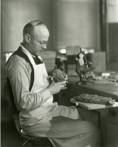 9 Professor george Beck