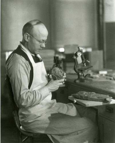 George Beck 1930s examining rock