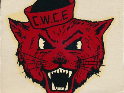 Ask Wellington: Were You Always Named Wellington P. Wildcat?